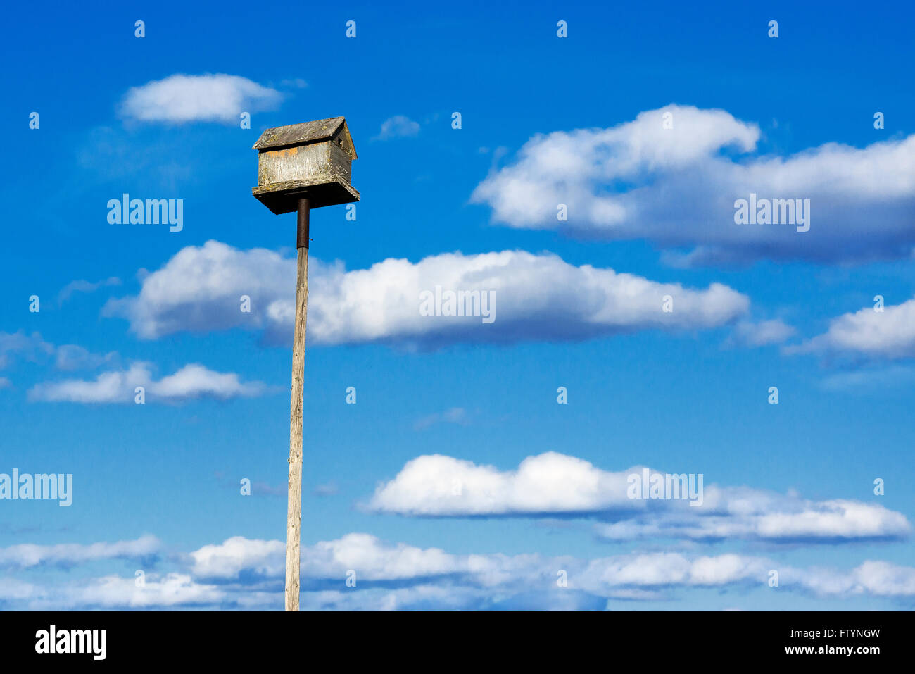 Birdhouse on a tall pole. - Stock Image