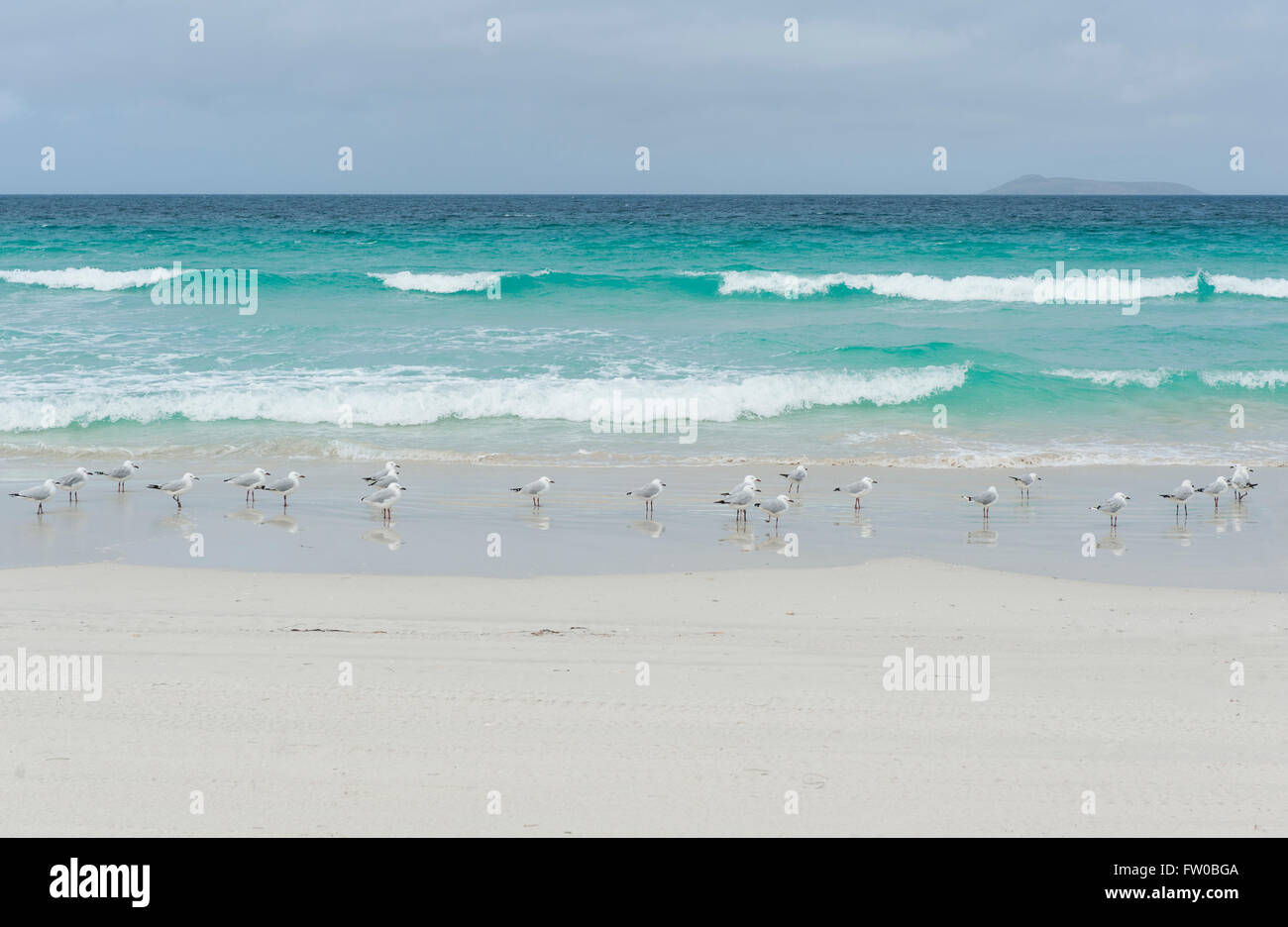 White beach and turquoise waters at Wylie Bay, Esperance, Western Australia Stock Photo