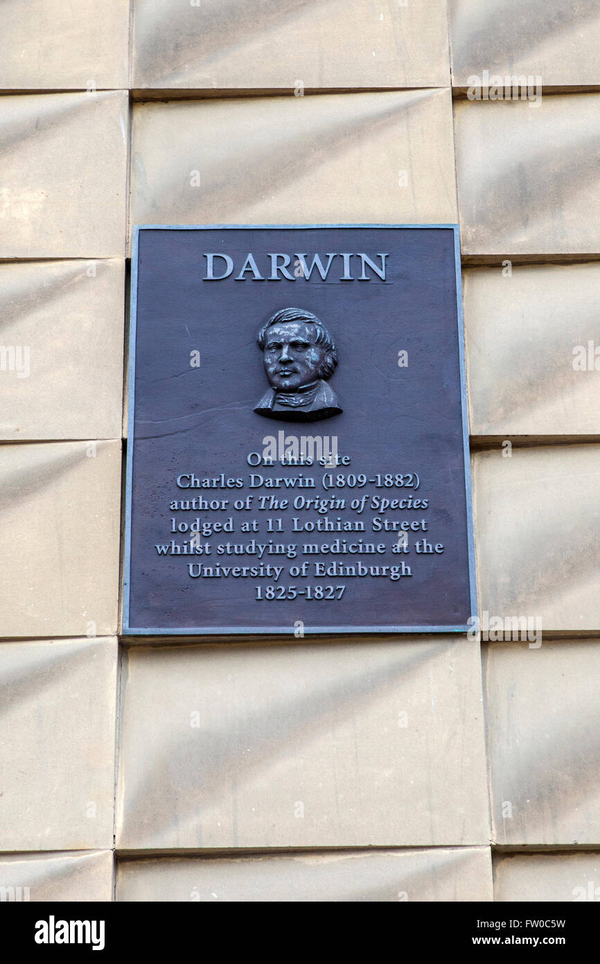 A wall plaque on South College Street in Edinburgh, dedicated to Charles Darwin - marking the location where he Stock Photo