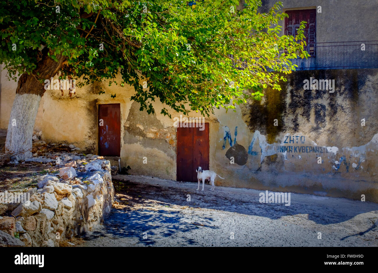 Picturesque Gerolimenas quiet street scene in the Peloponnese, Greece, showing dog and dwelling - Stock Image