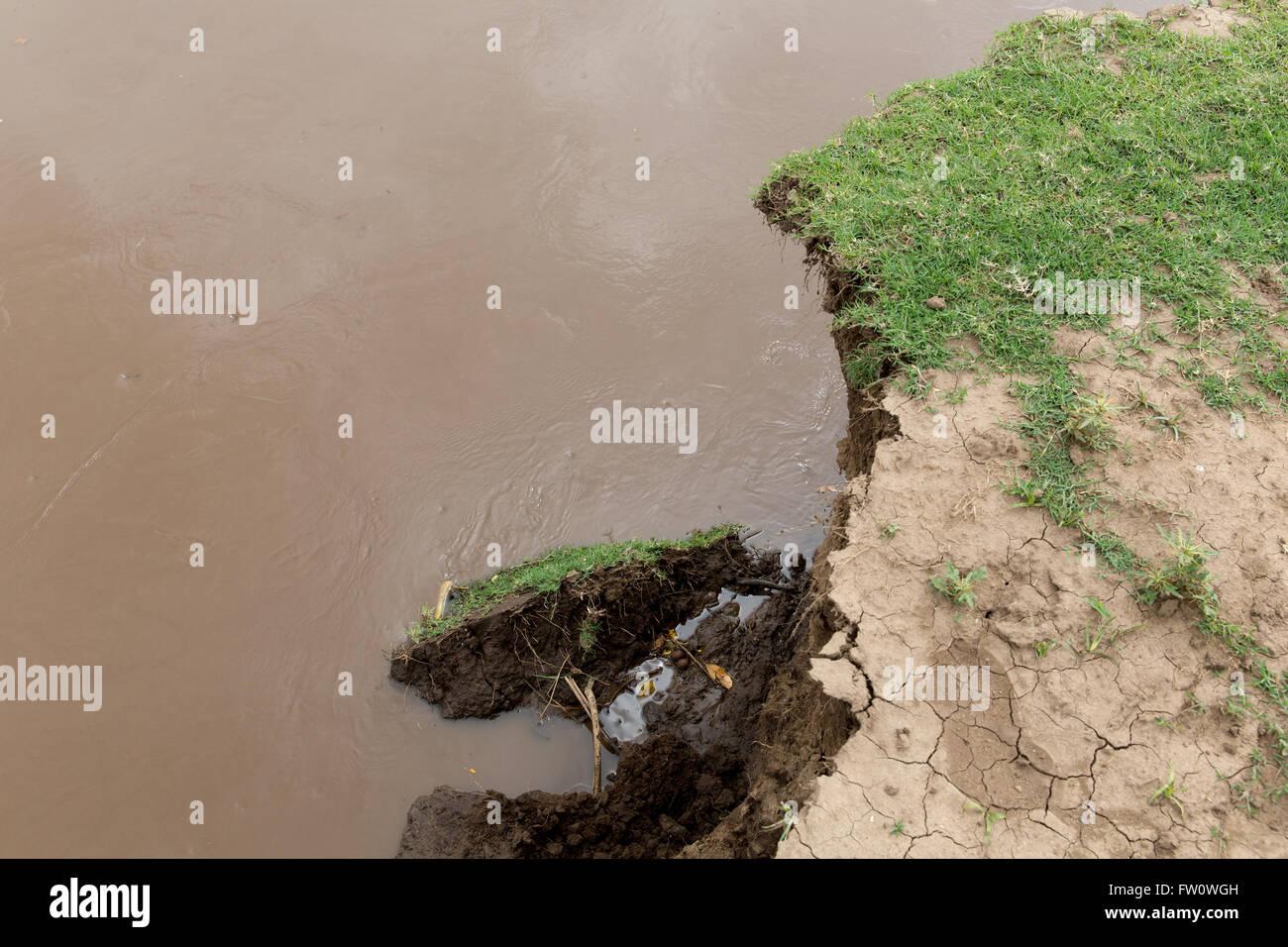 Meki River Delta, Ethiopia, October 2013 River erosion due to poor watershed management upstream. - Stock Image