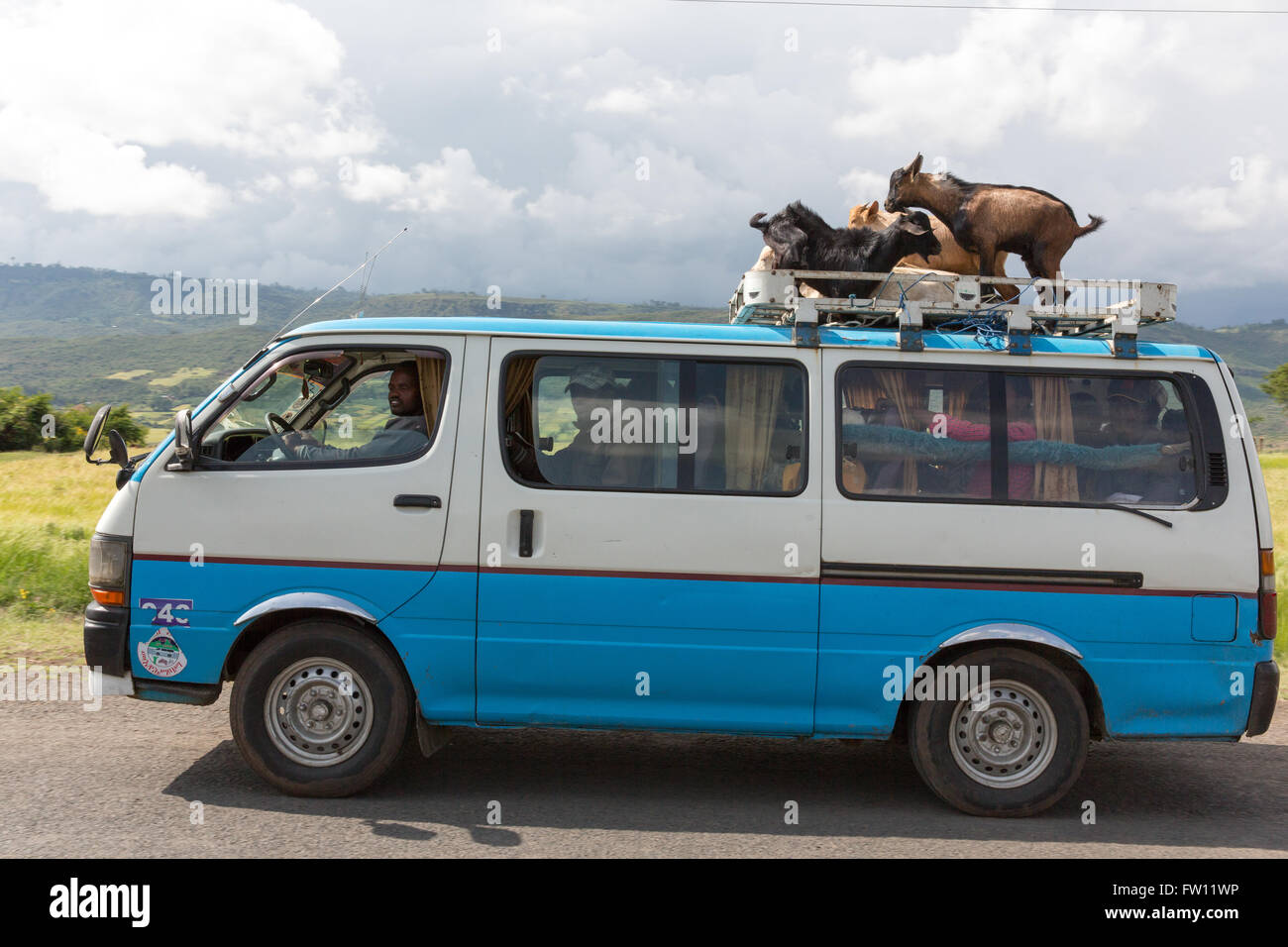West Shewa, Oromia, Ethiopia, October 2013 A local bus service carrying goats on the roof. - Stock Image