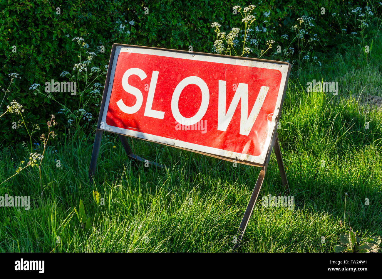 SLOW road sign in a grass verge on a country road - Stock Image