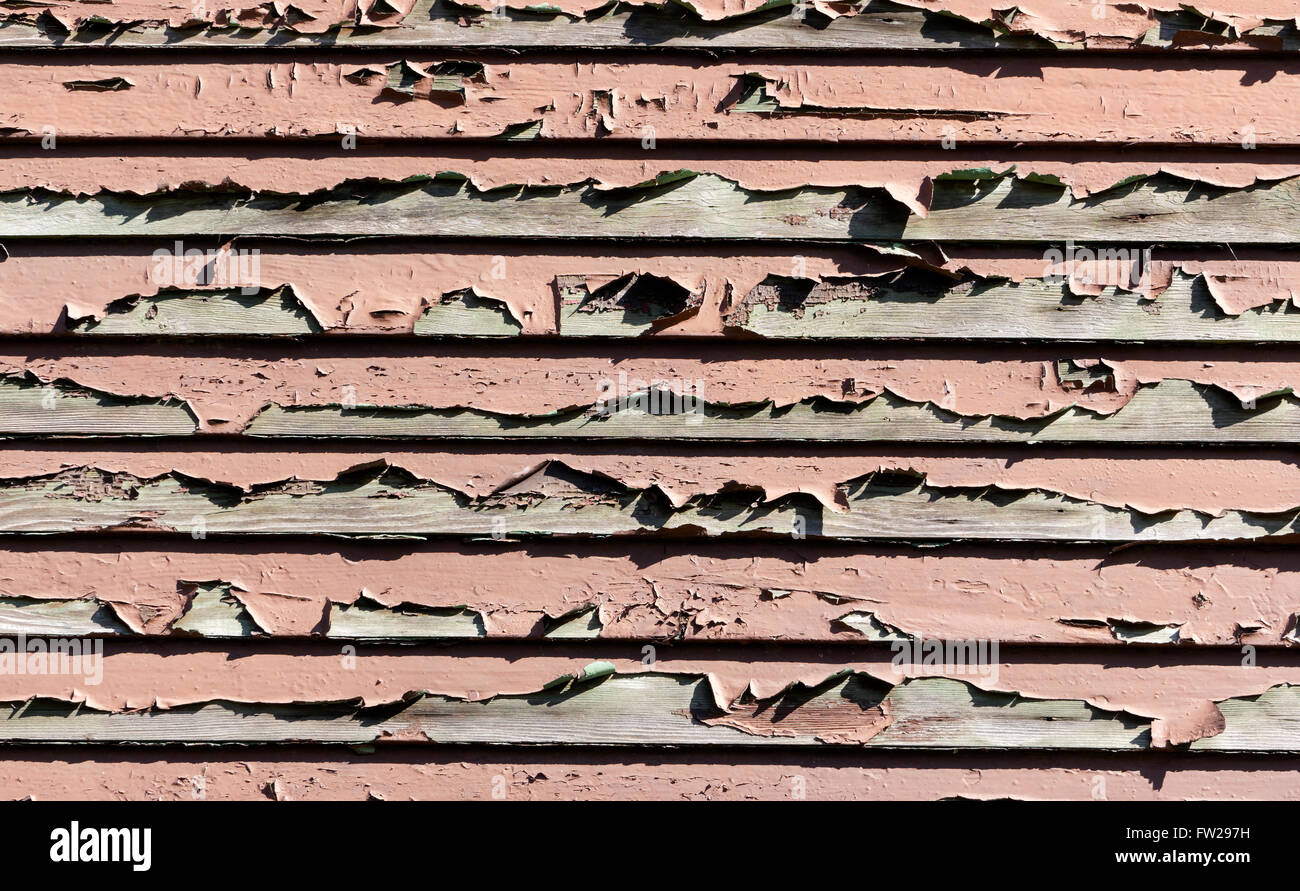 Paint peeling from an old weathered wooden wall of an old house - Stock Image