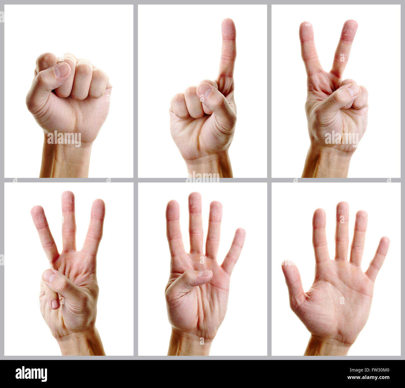 Hand counting - Stock Image