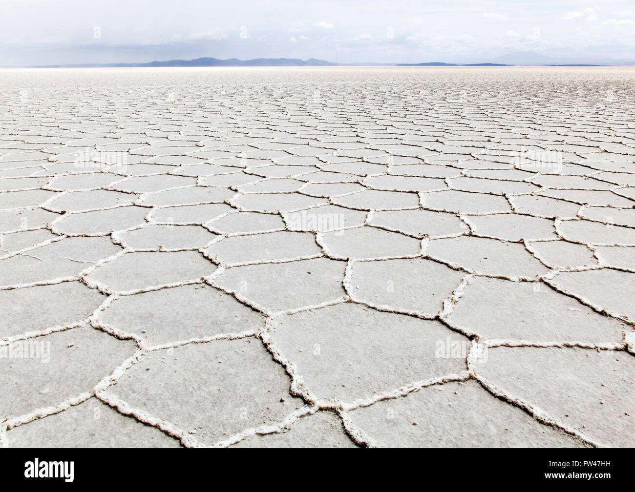 Salts flats, Uyuni, Bolivia - Stock Image