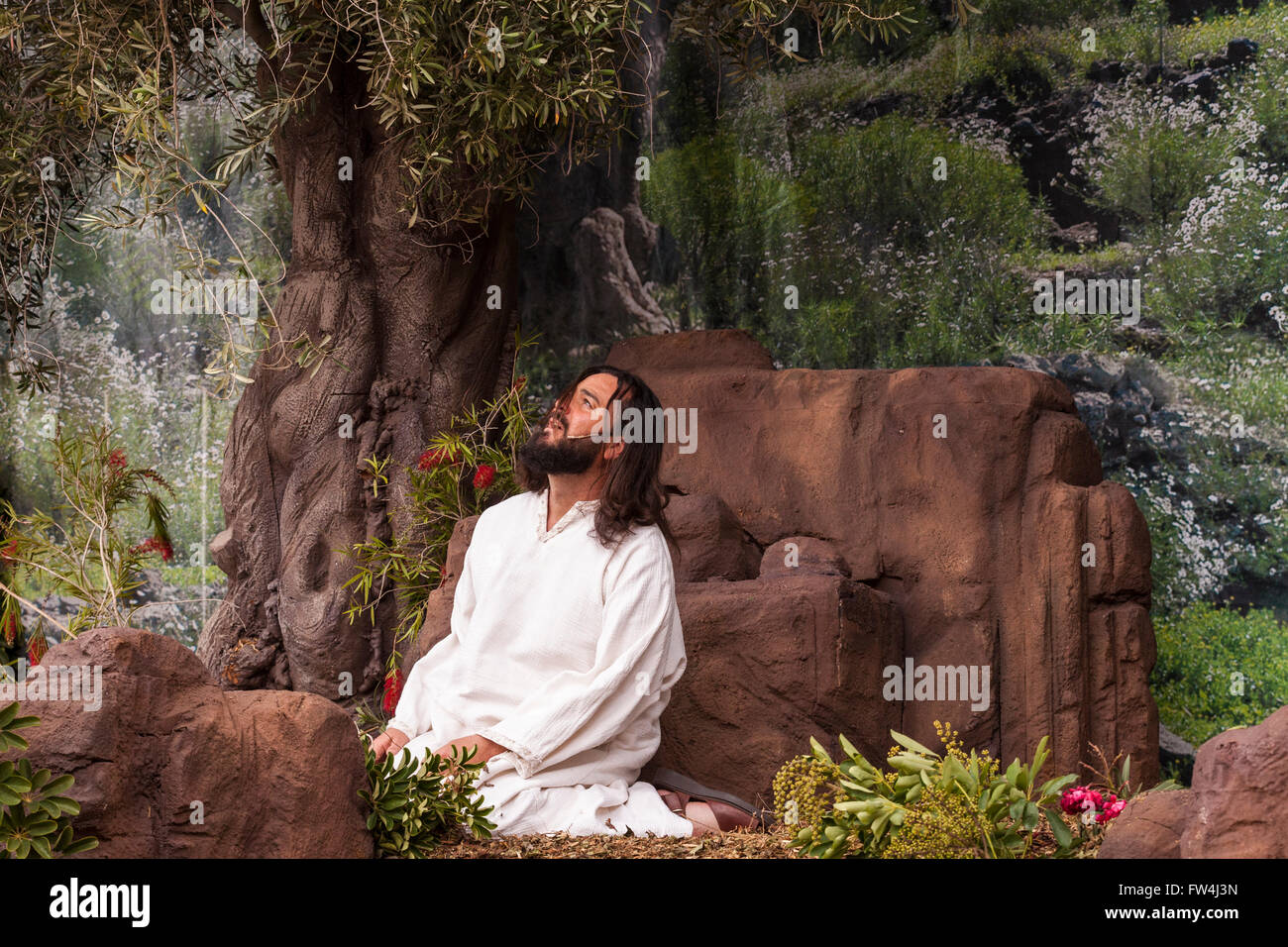 Garden Staging Stock Photos & Garden Staging Stock Images - Alamy