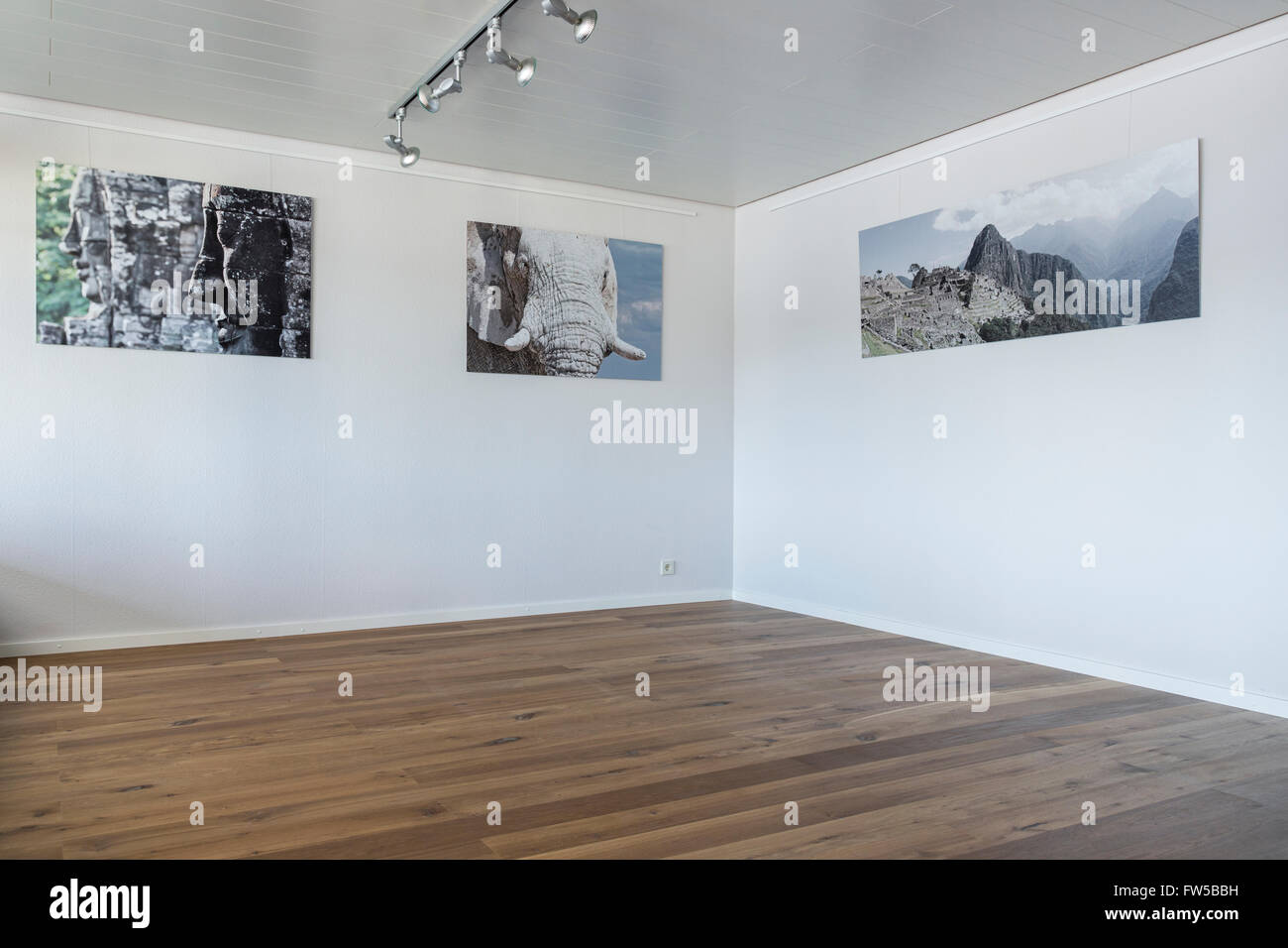 Empty room with parquet floor and individual posters hanging on the wall - Stock Image