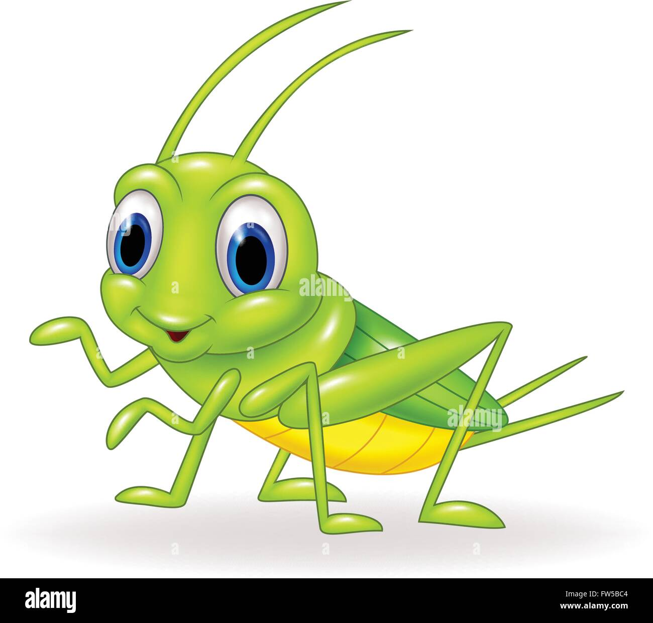 cricket insect cute stock photos cricket insect cute stock images rh alamy com Crickets Chirping Cartoon Crickets Insect