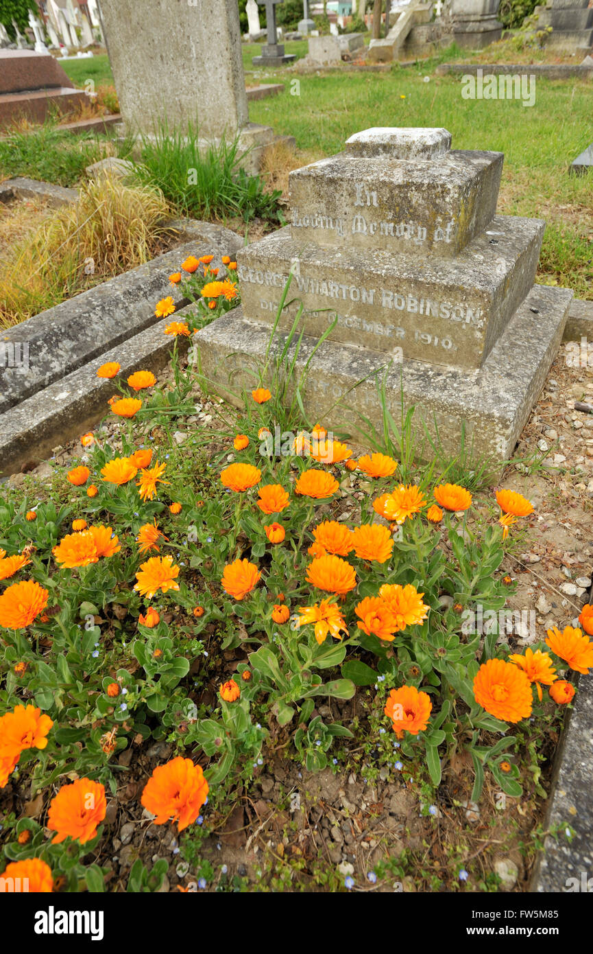 the grave in Highland Rd. Cemetery, Southsea, Portsmouth, of George Wharton Robinson with his wife, Ellen (Nelly) - Stock Image