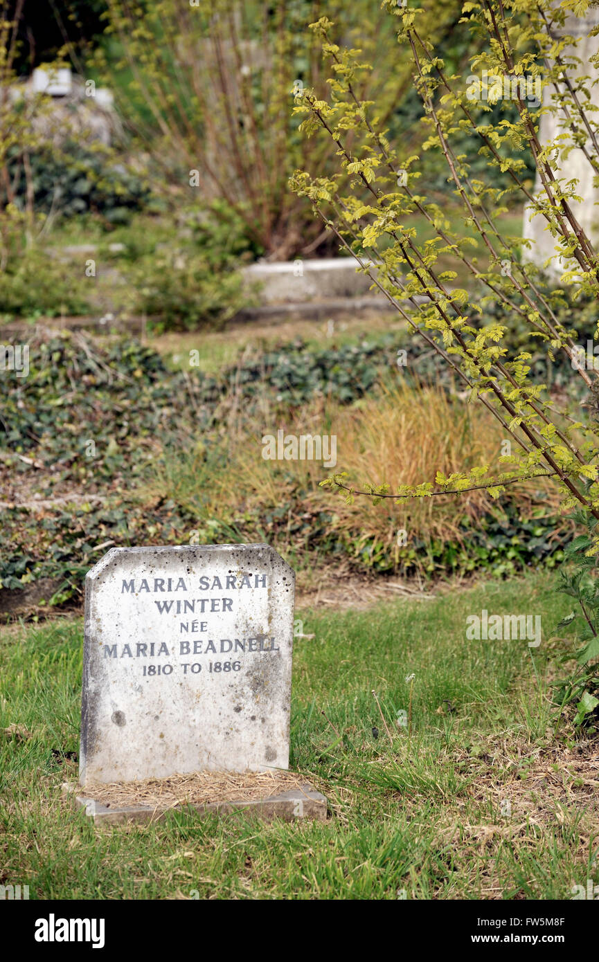 the grave in Highland Rd. Cemetery, Southsea, Portsmouth, of Maria Sarah Winter, née Maria Beadnell, 1810-1886, - Stock Image