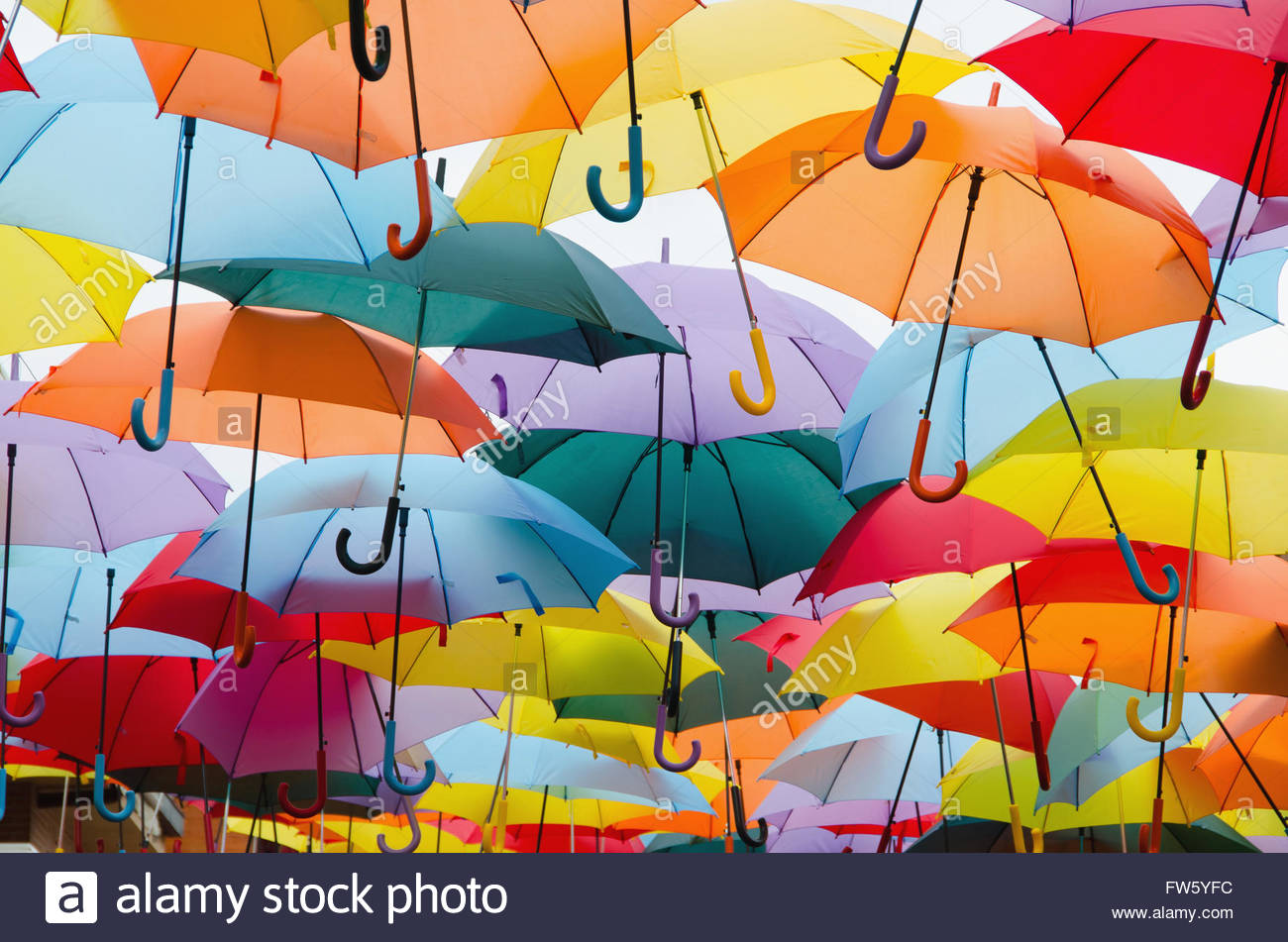 Bright colorful hundreds of umbrellas floating above the street - Stock Image