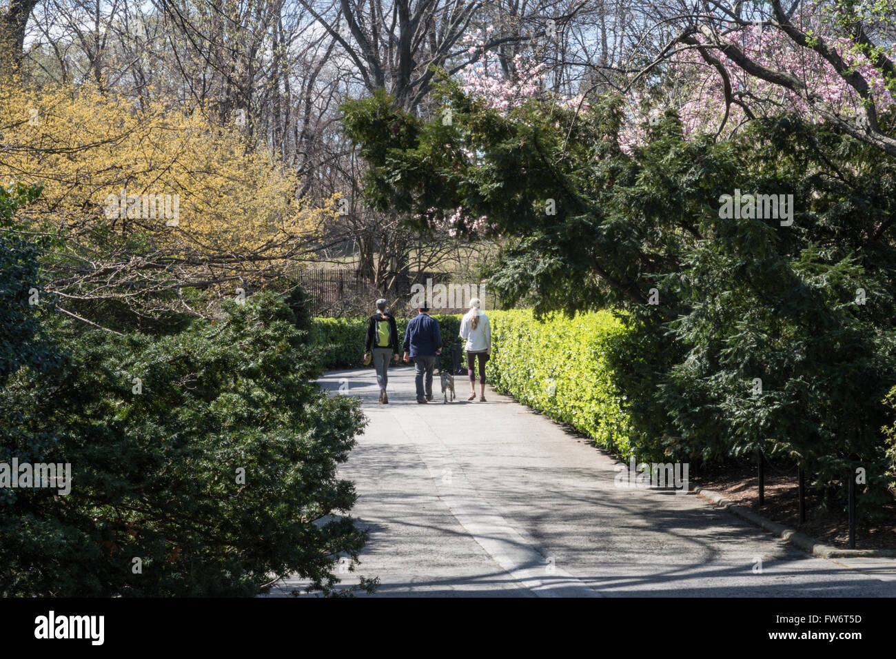 Tourists Enjoying The Conservatory Garden, Central Park, NYC - Stock Image