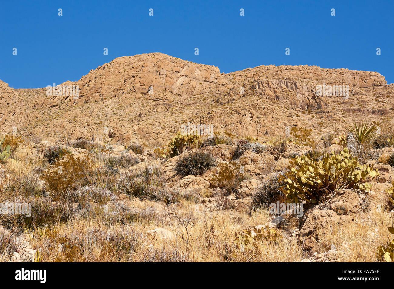 Boquillas Canyon, Big Bend National Park, Texas, USA Mexico Border - Stock Image