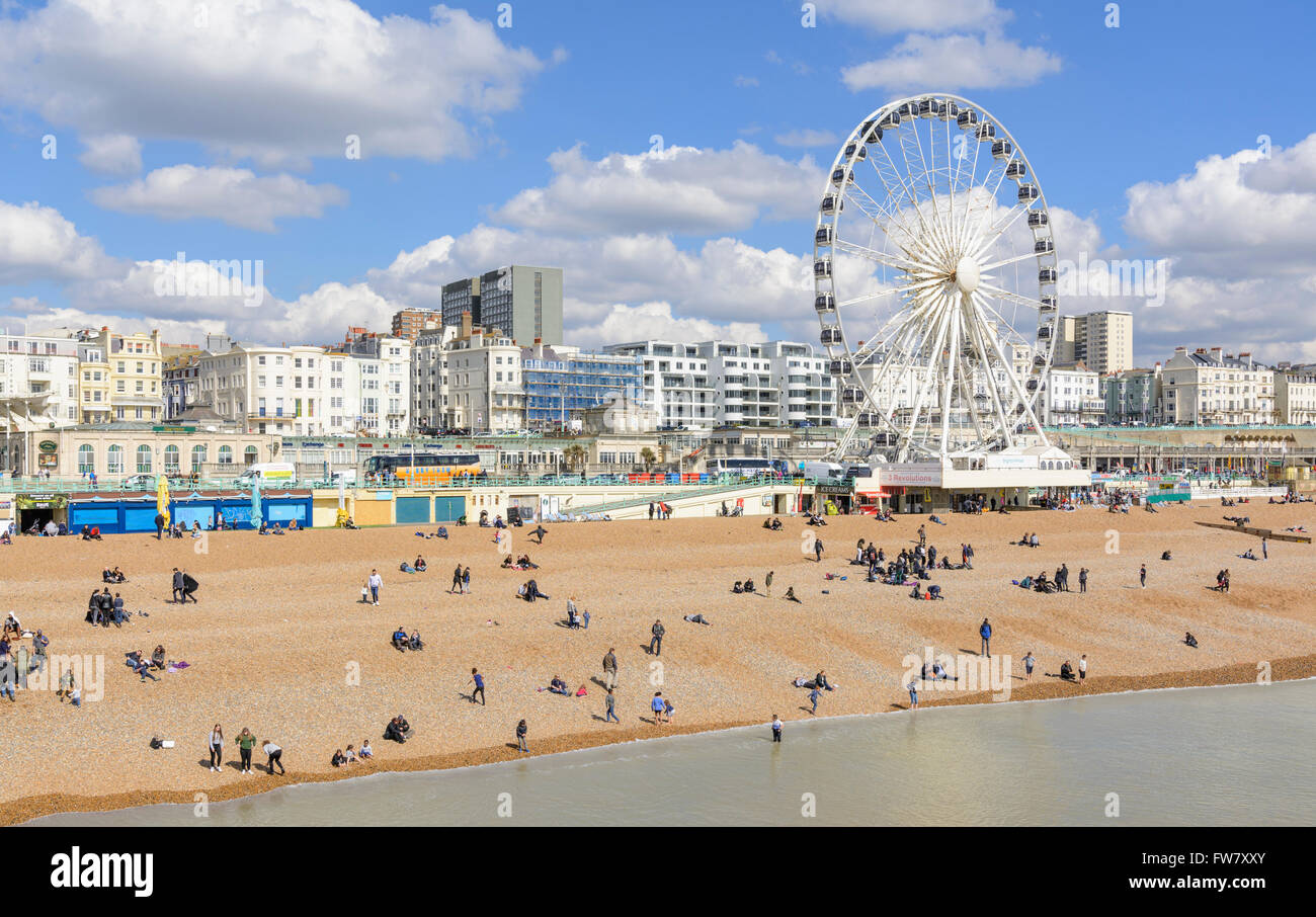 Brighton Beach and Brighton Wheel on Brighton seafront on a sunny day in early Spring, in Brighton, East Sussex, - Stock Image