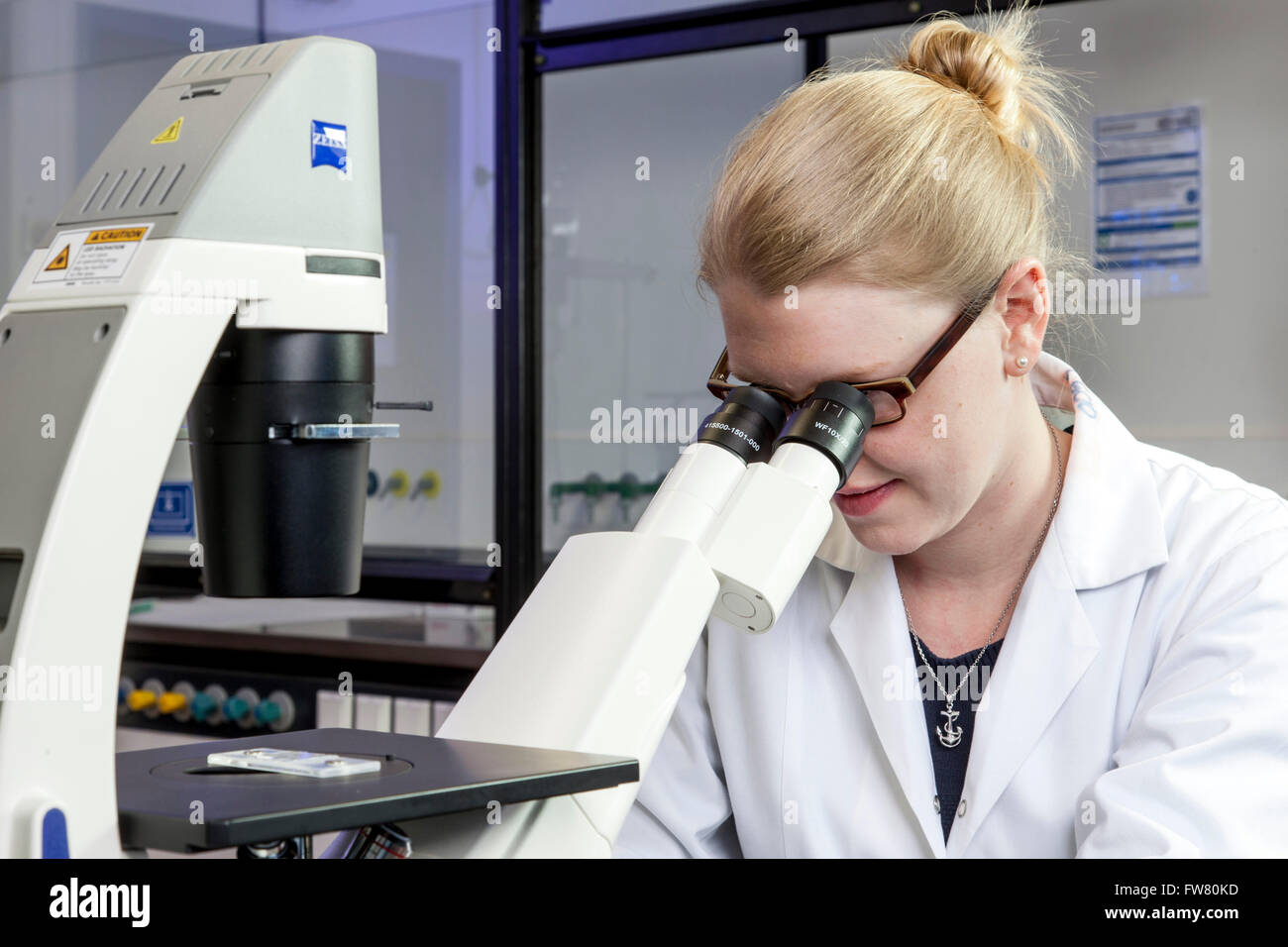 Scientist at a microscope. - Stock Image