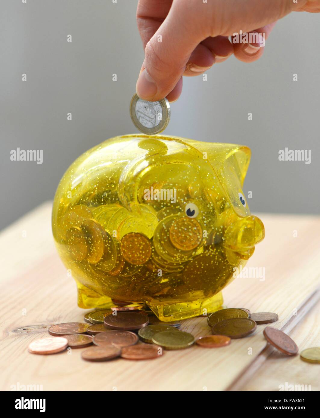 a piggy bank is filled with money, Freiburg, March 1, 2016. - Stock Image