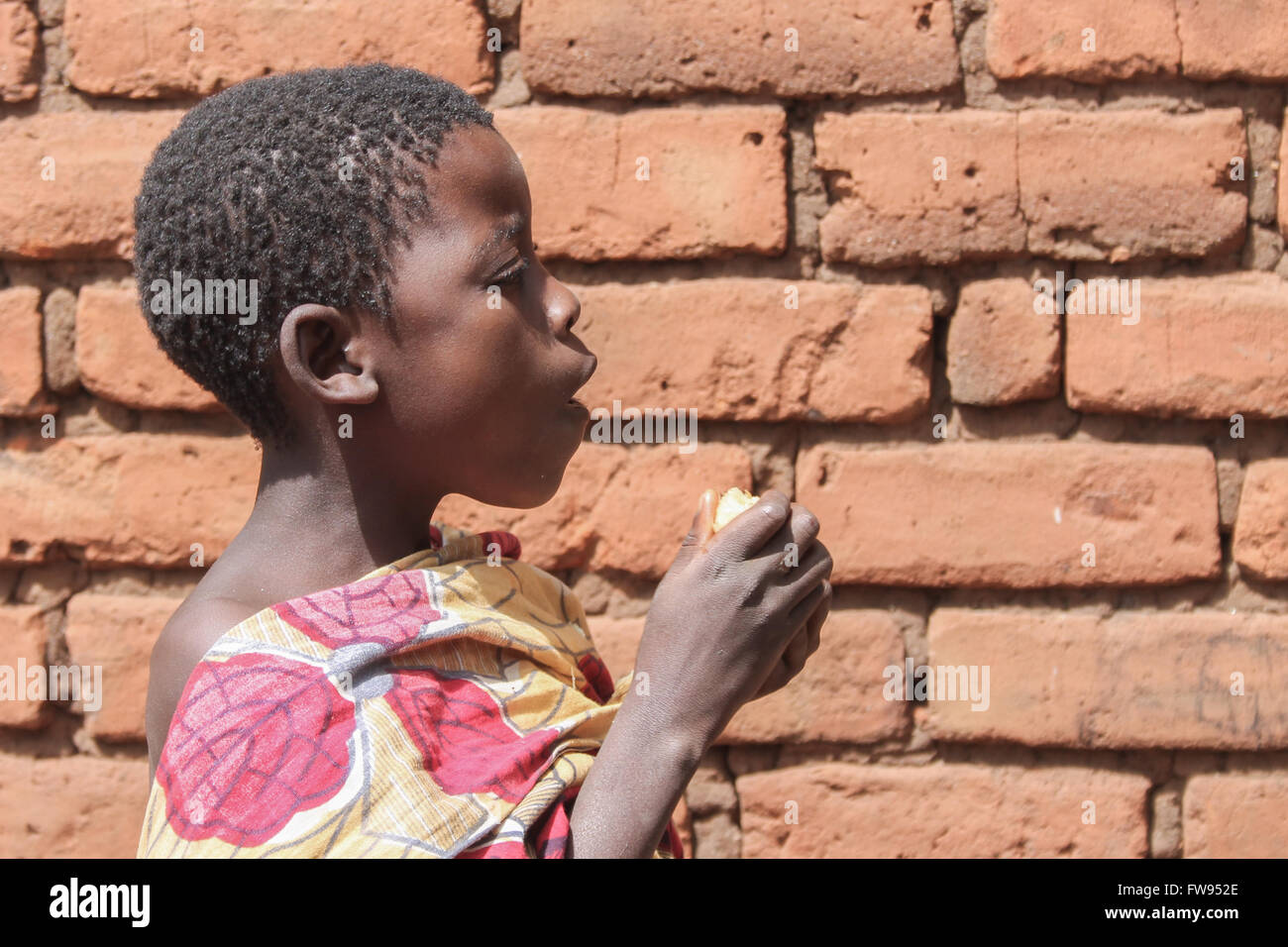 A young girls eats sugarcane. - Stock Image