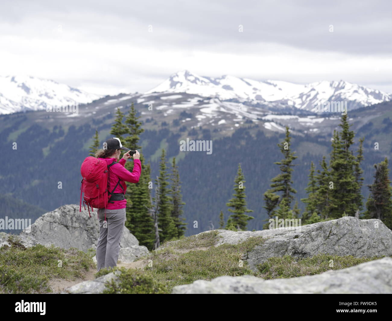 A young female hiker on mountain summit holding a smart phone in Whistler Blackcomb alpine hike, BC, Canada Stock Photo