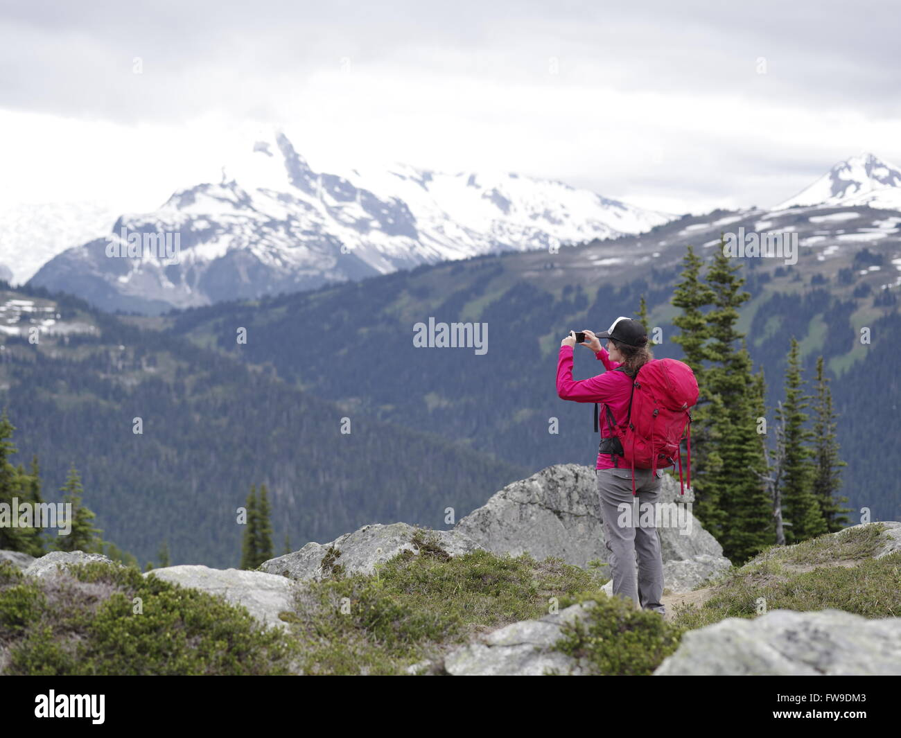 A young female hiker on mountain summit holding a smart phone in Whistler Blackcomb alpine hike, BC, Canada - Stock Image