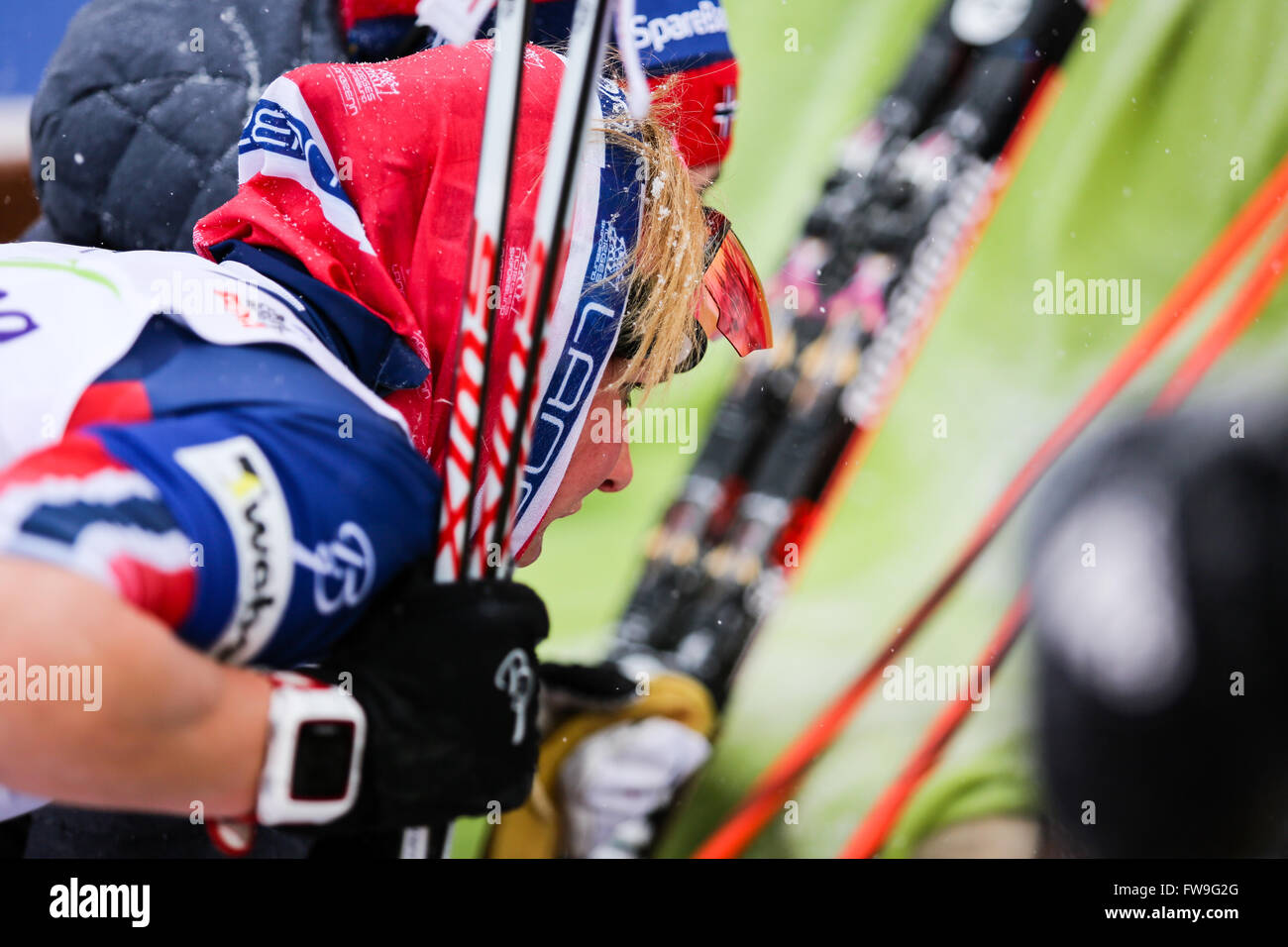 Nove Mesto na Morave, Czech Republic - January 23, 2016: FIS Cross Country World Cup, women 10km. - Stock Image