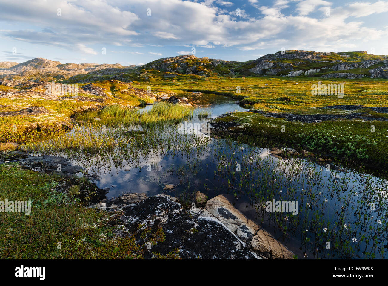 Long day of short northern summer. The peninsula Nemetskiy in the Barents Sea. Northern territory of Russia. Polar - Stock Image
