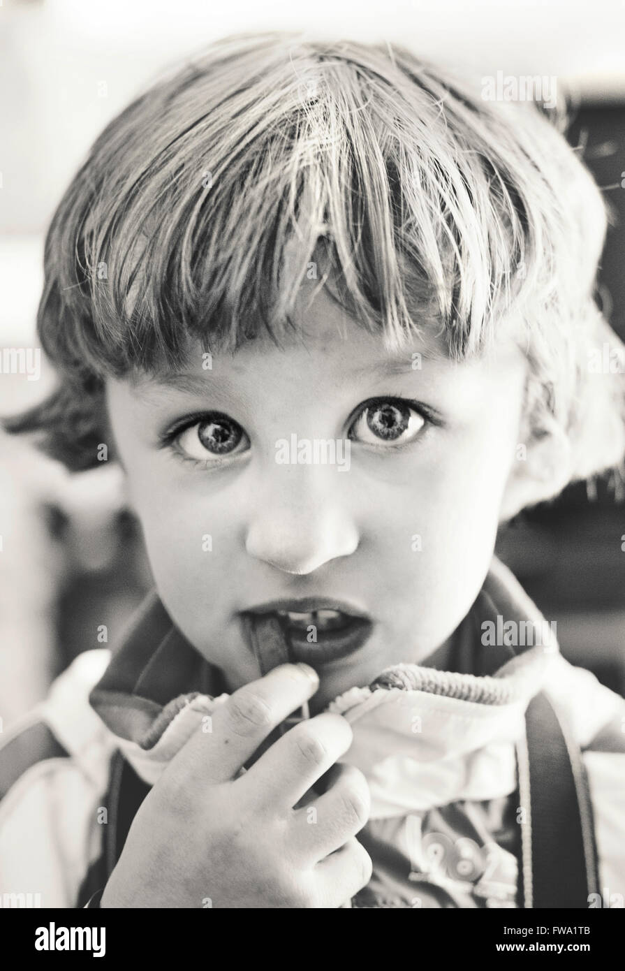 portrait of small boy eating looking at camera Stock Photo