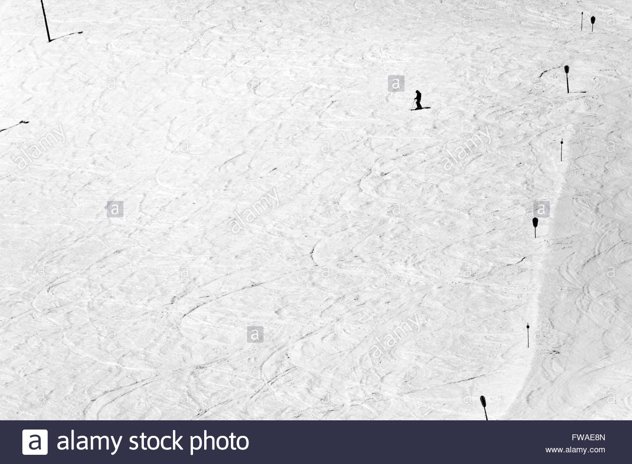 one person on a large slope skiing down hill - Stock Image