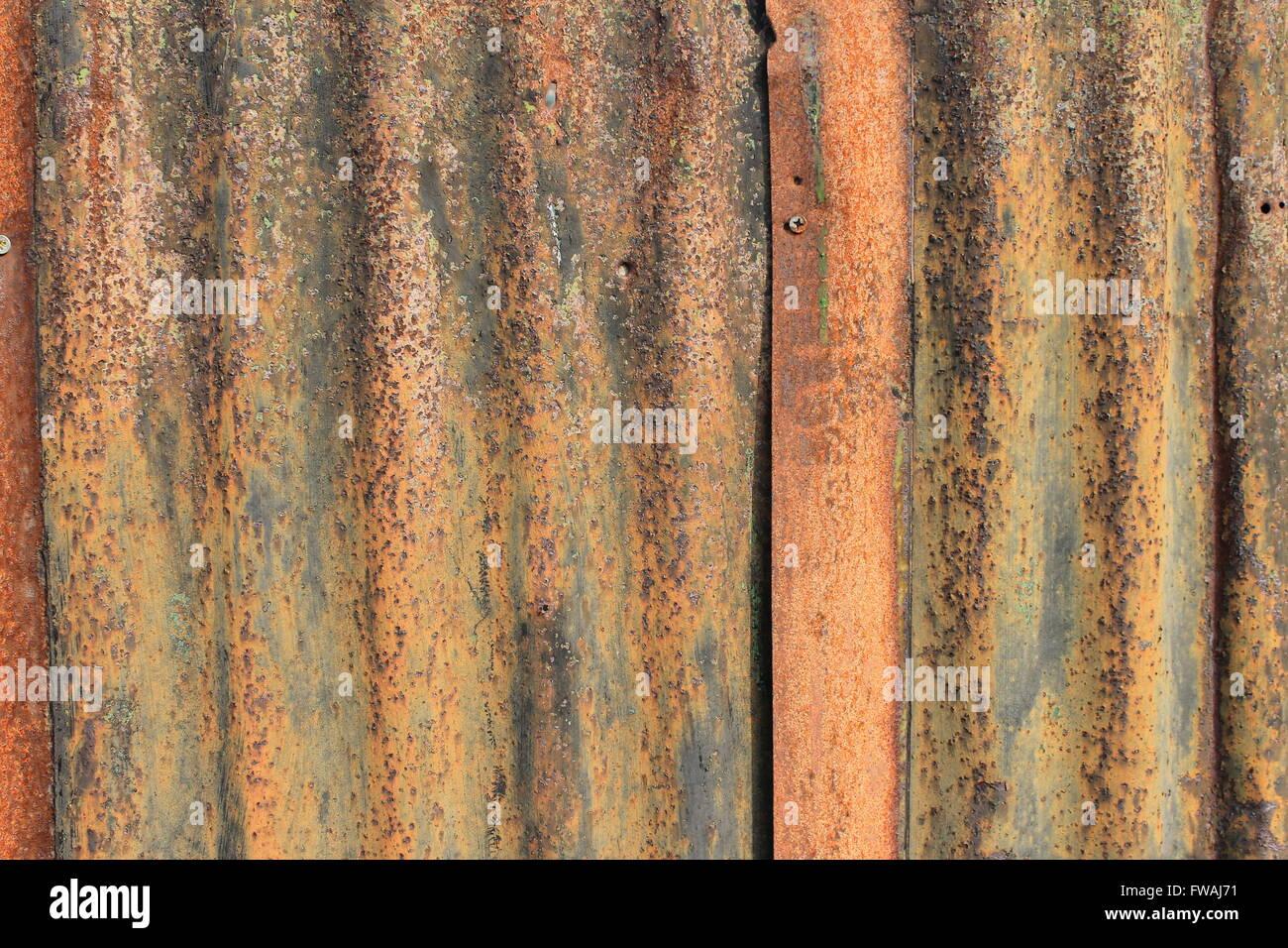 Rusty corrugated sheet metal - Stock Image
