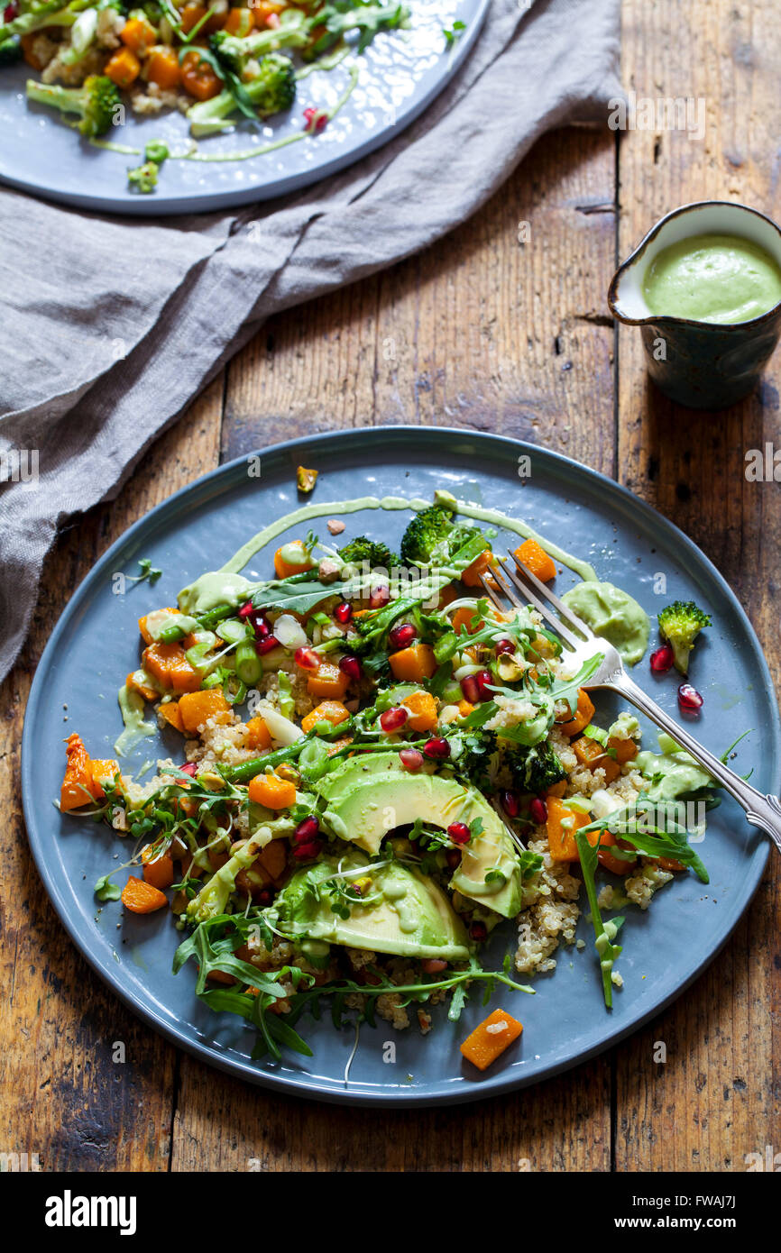 Healthy vegetarian salad with quinoa, butternut squash and avocado - Stock Image