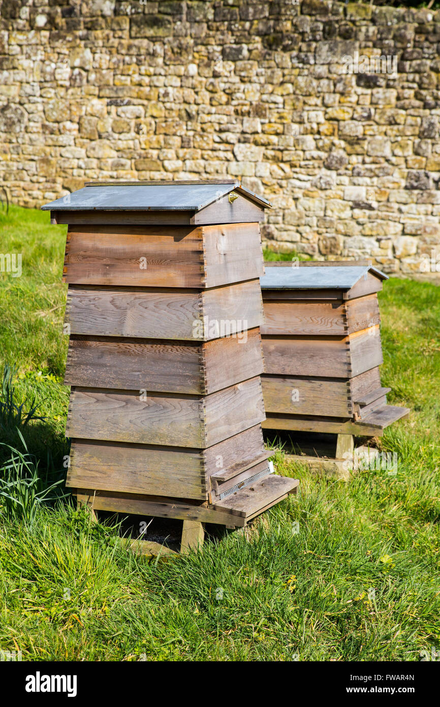 Traditional Beehives. - Stock Image