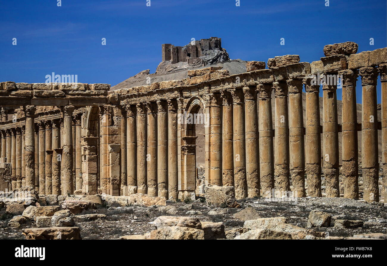 Palmyra, Syria. 3rd Apr, 2016. The Great Colonnade with Fakhr al-Din al-Maani Citadel in the distance in the ancient - Stock Image