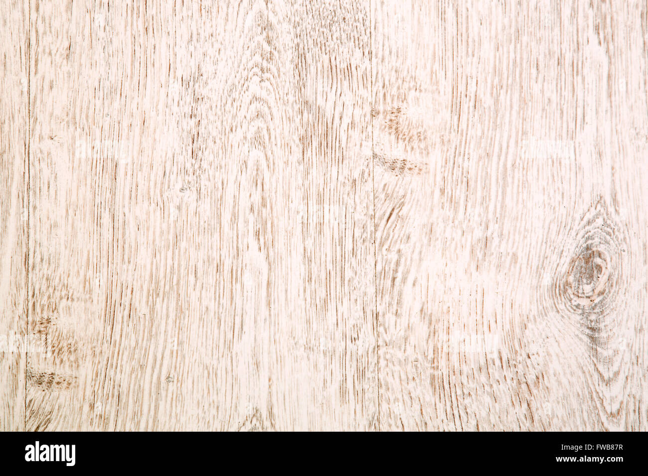 Texture of light wooden laminate - Stock Image