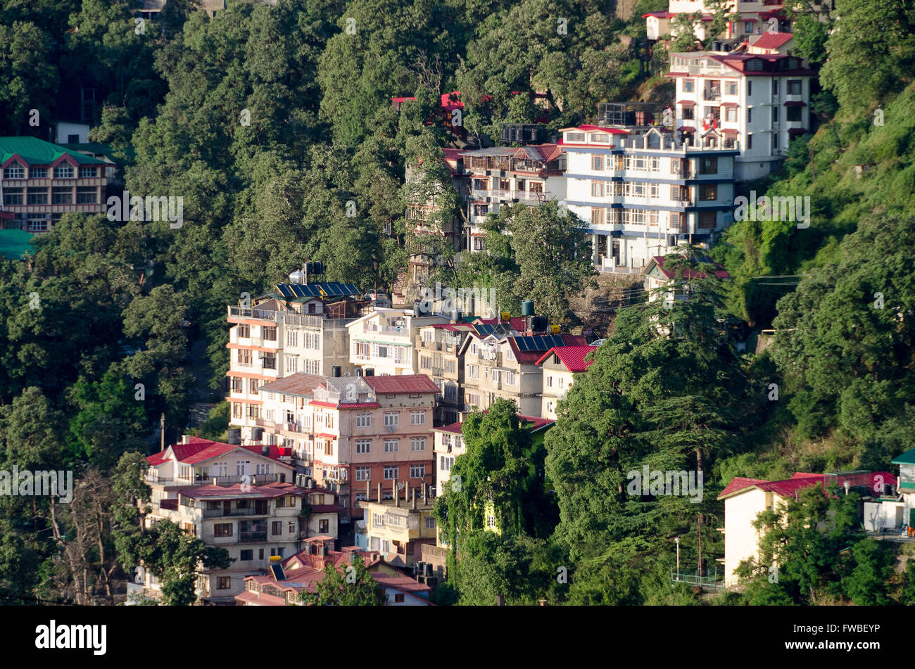 Houses on hillside, Shimla, Himachal Pradesh, India. Stock Photo