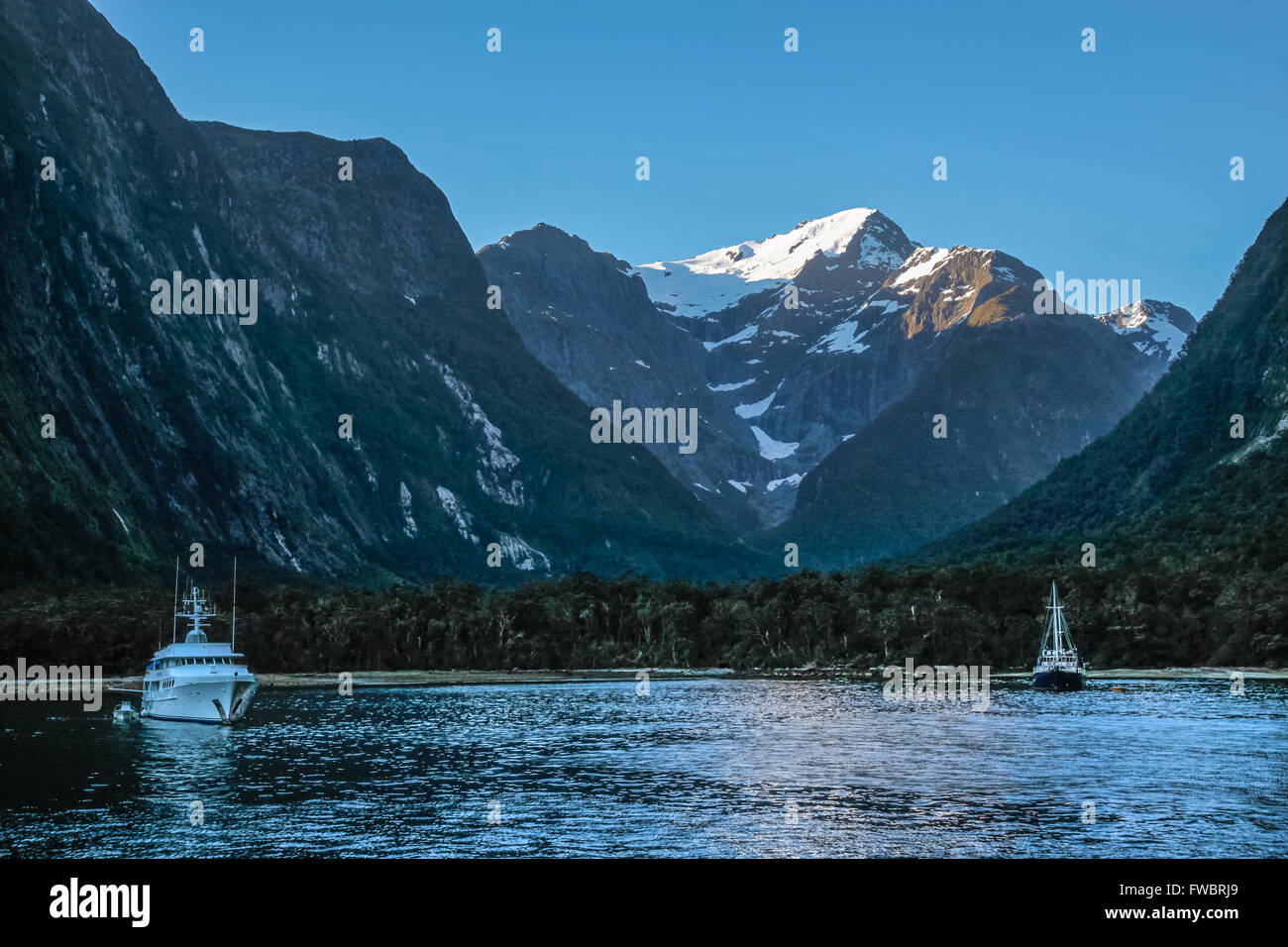 Blue hour in the Milford Sound, Southland, South island,  New Zealand - Stock Image