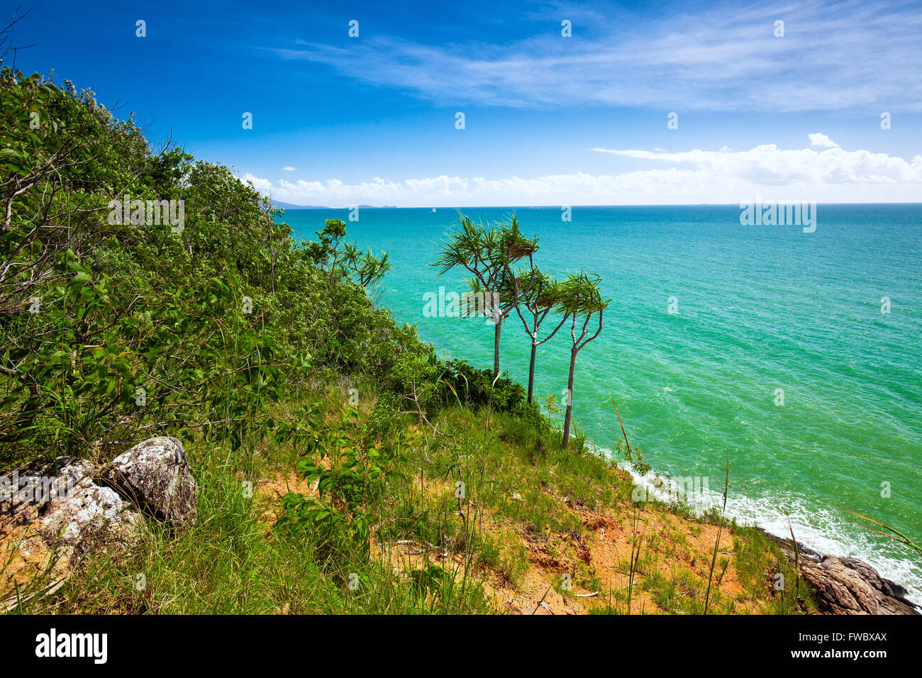 Beach and tropical vegetation from the lookout, Port Douglas, Australia - Stock Image