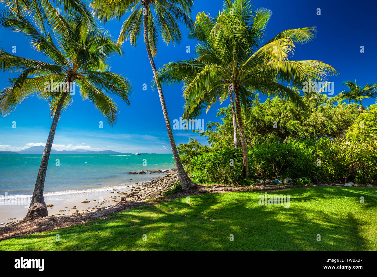 Rex Smeal Park in Port Douglas with tropical palm trees and beach, Australia - Stock Image