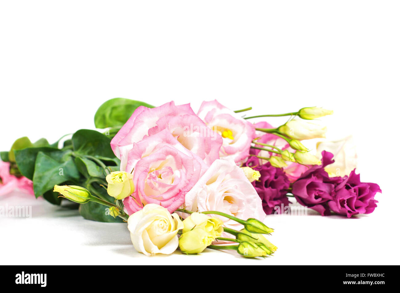 Beautiful lisianthus bouquet on the lihgt backgroung - Stock Image