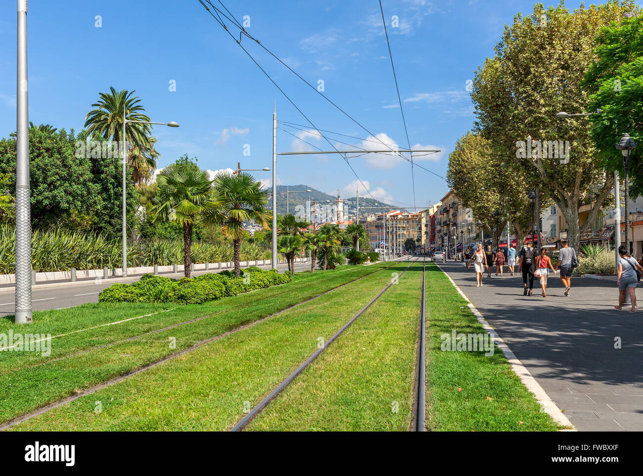 Tram rails on green grass in the center of Nice, France. - Stock Image