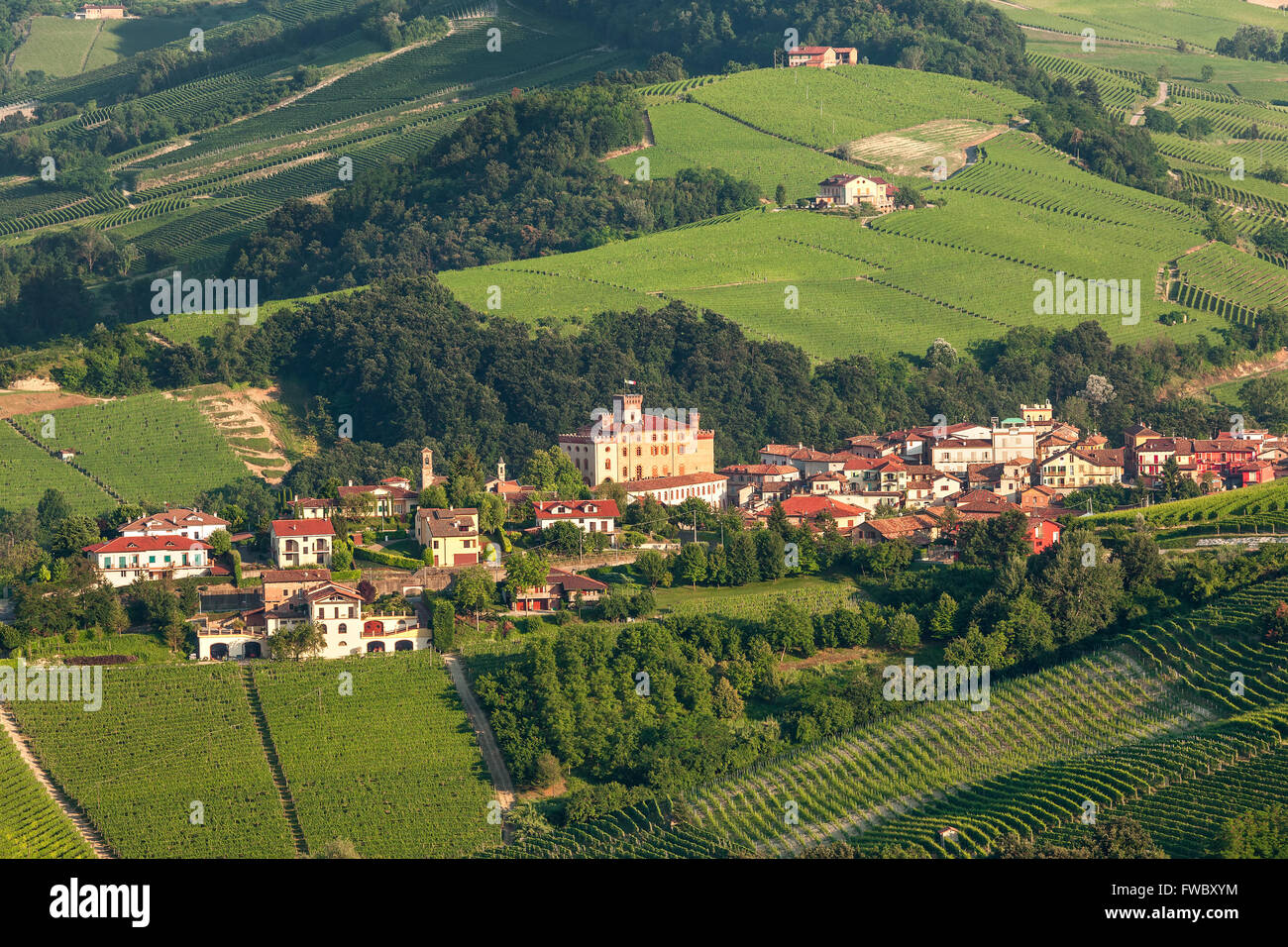 Small town of barolo among green hills of piedmont for Green italy