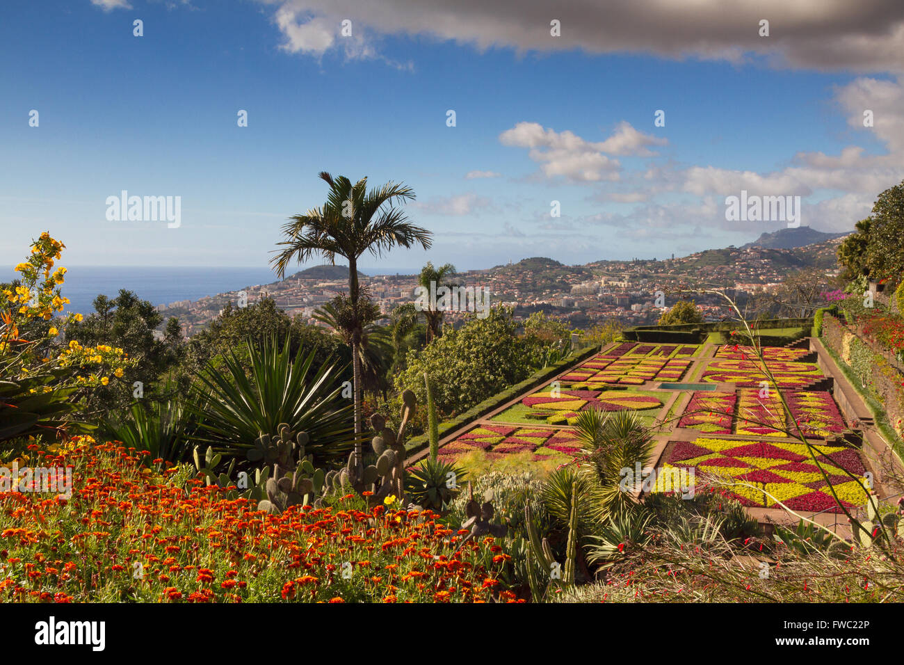 Botanical garden of Funchal, Madeira, Portugal - Stock Image