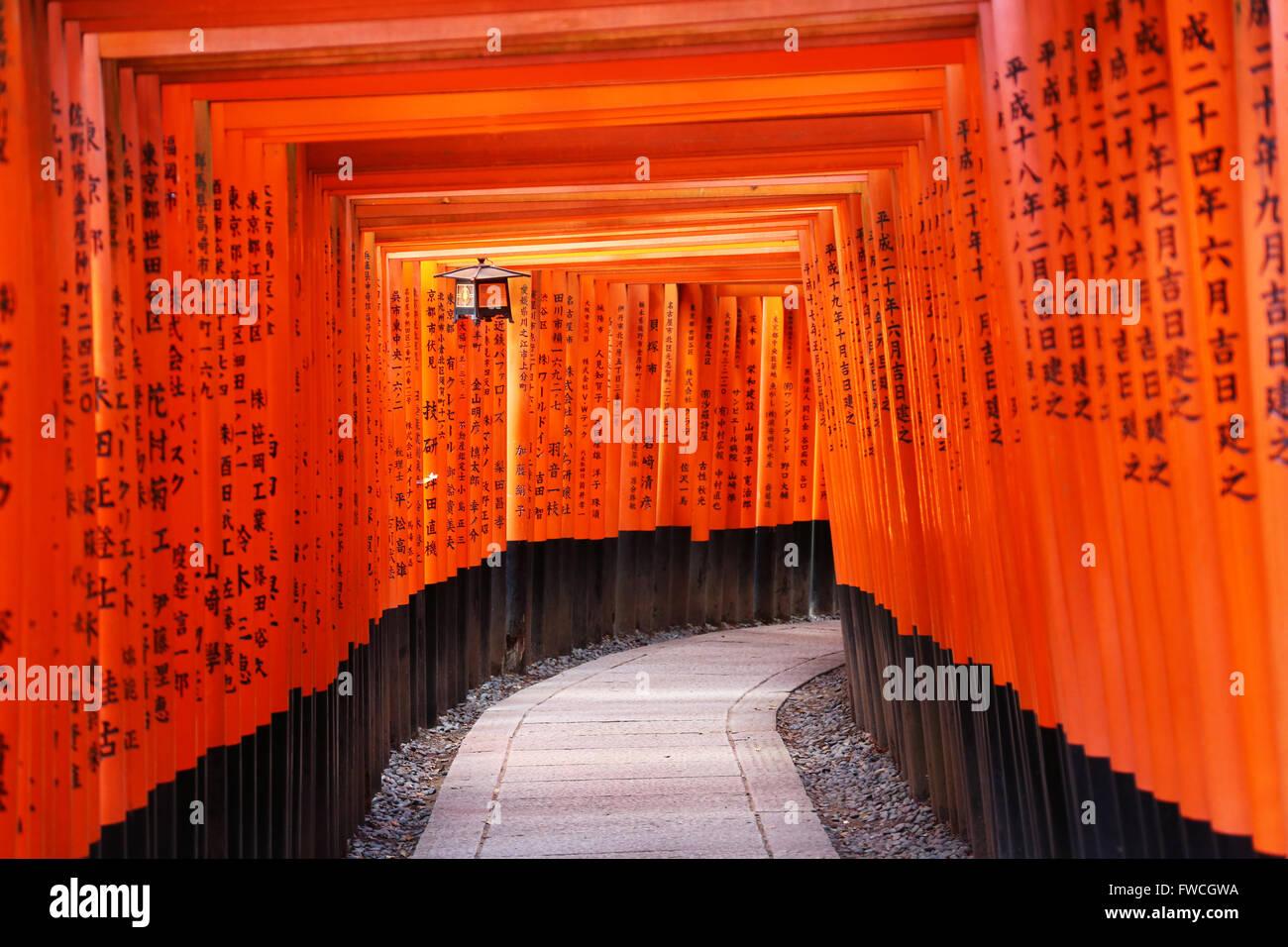 Senbon Torii, tunnels of red torii gates, at Fushimi Inari Shinto shrine in Kyoto, Japan - Stock Image