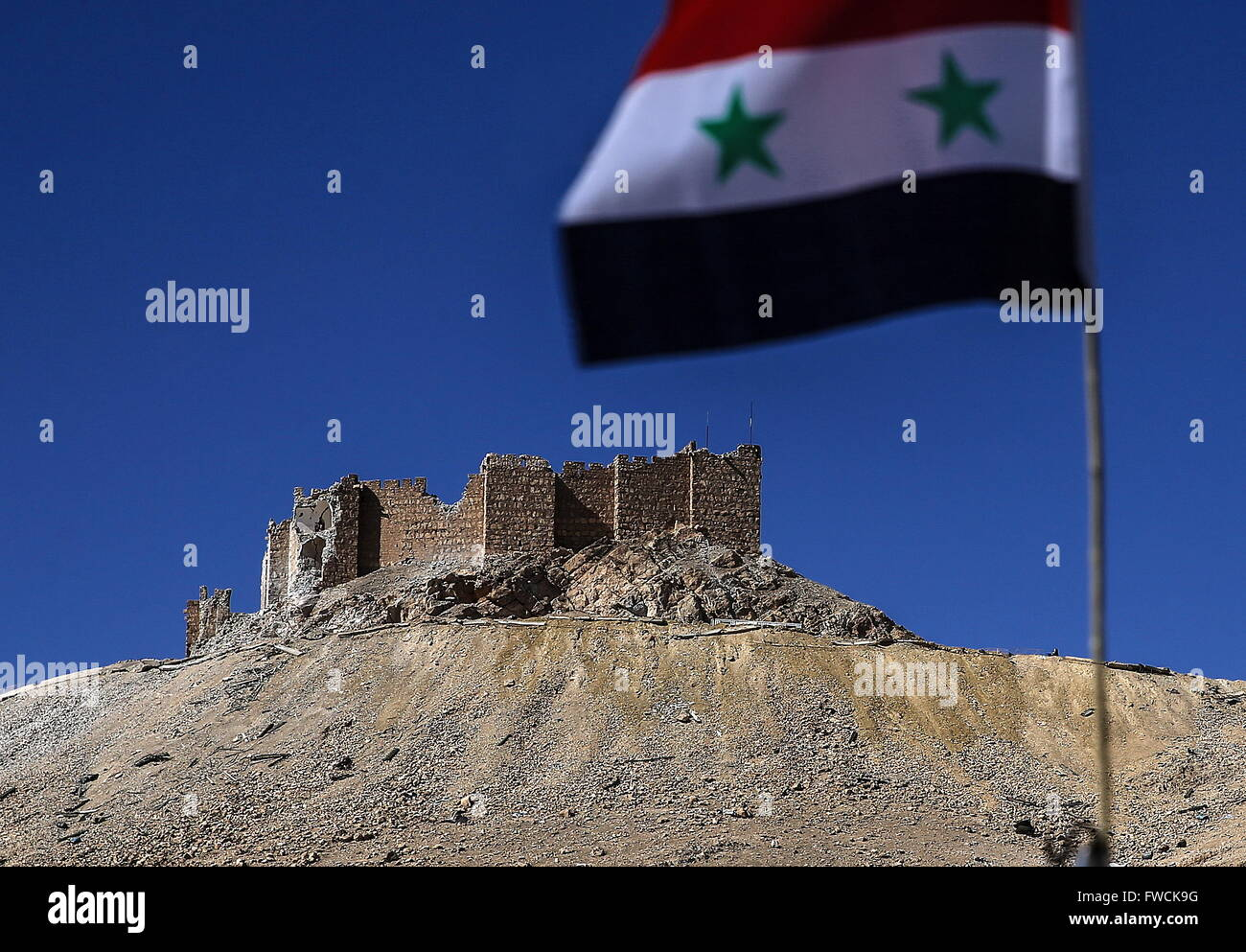 Palmyra, Syria. 2nd Apr, 2016. Fakhr al-Din al-Maani Citadel on the outskirts of Palmyra, with a Syrian national - Stock Image