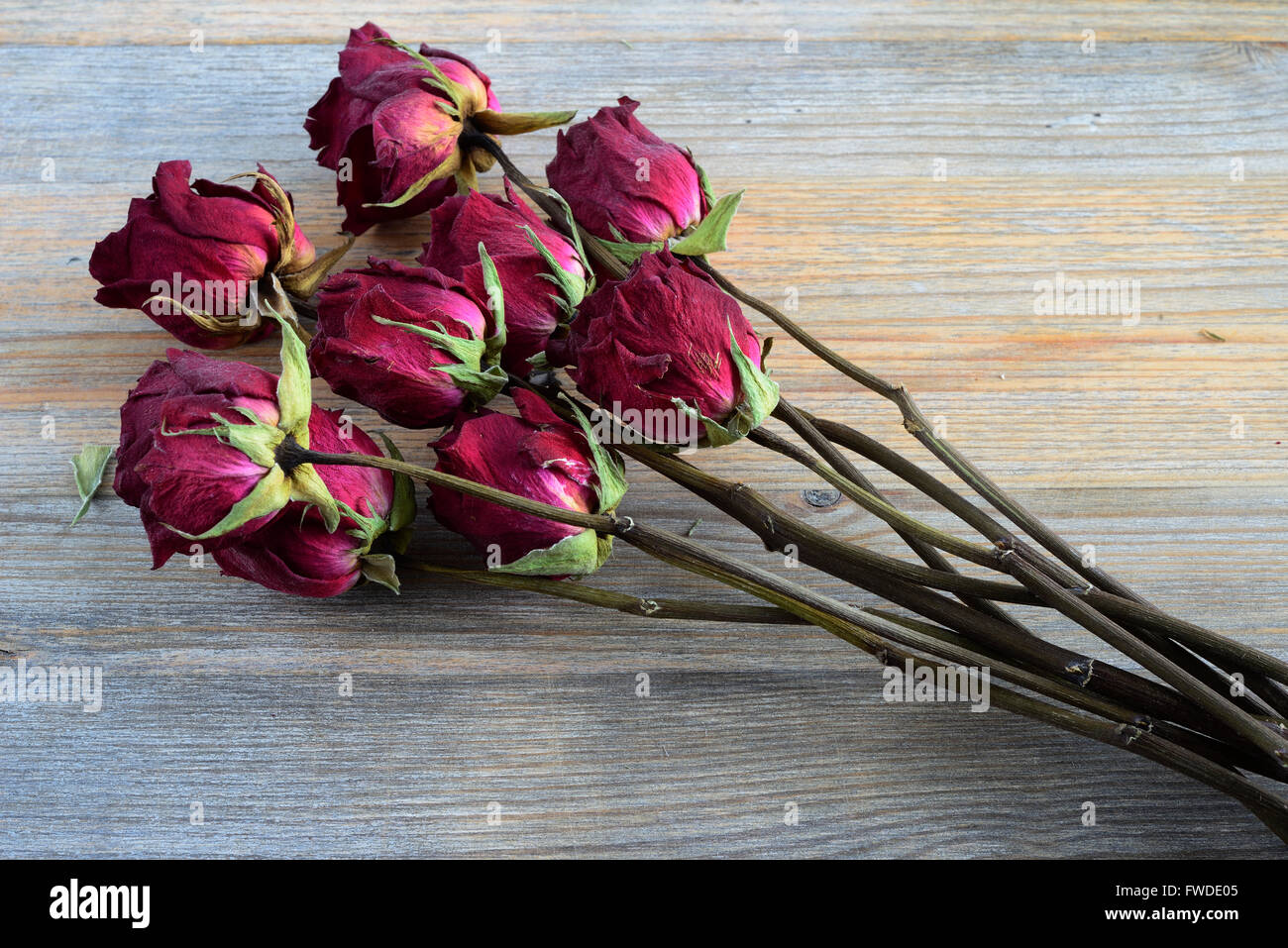 bouquet of withered roses on a wooden background - Stock Image