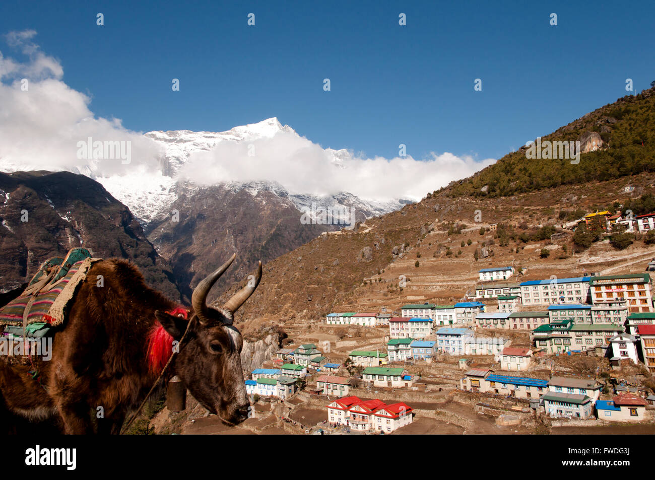 Namche Bazaar Village - Nepal - Stock Image