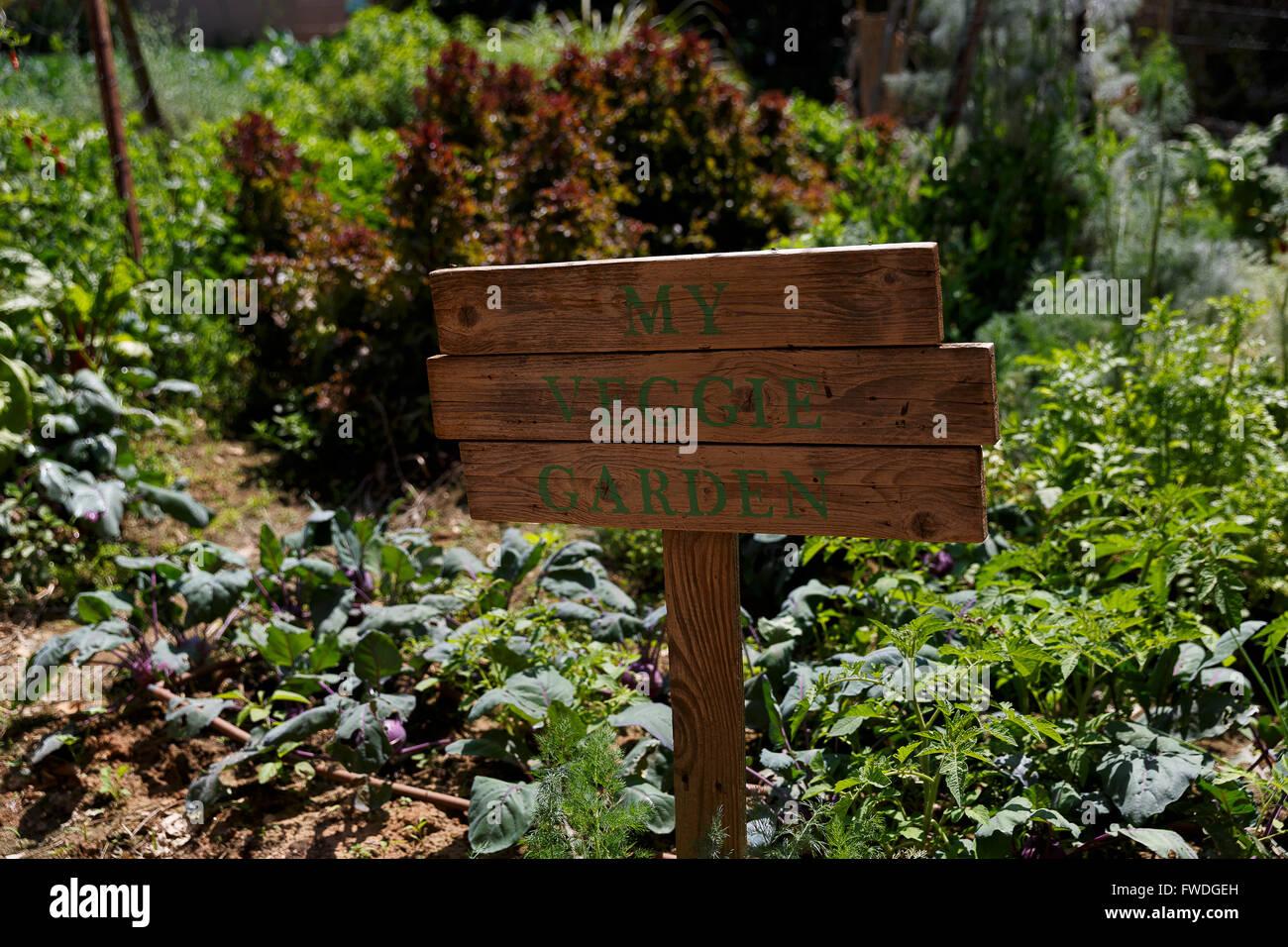 Veggie Garden Stock Photos & Veggie Garden Stock Images - Alamy