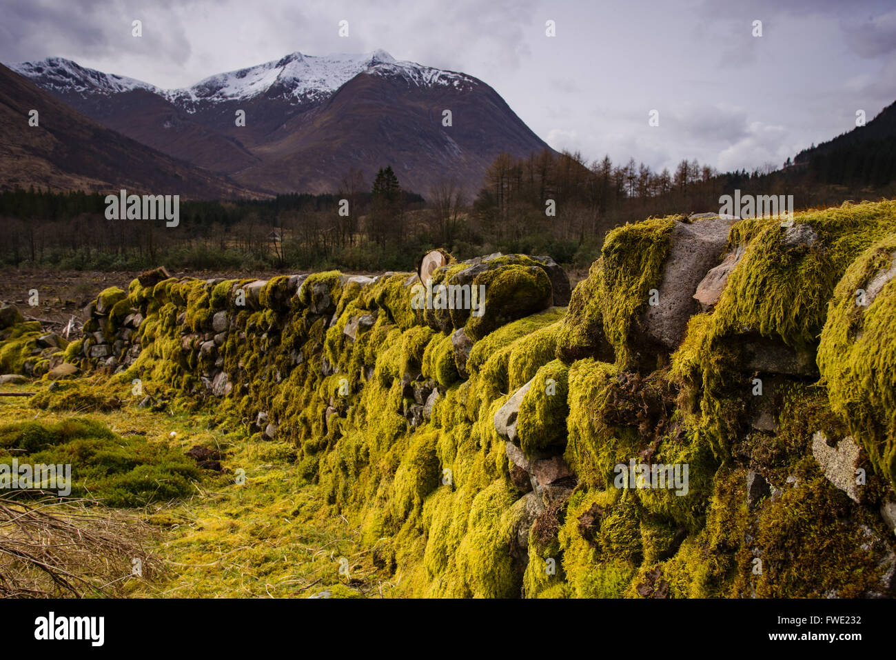 Croft house in Scottish Highlands Stock Photo