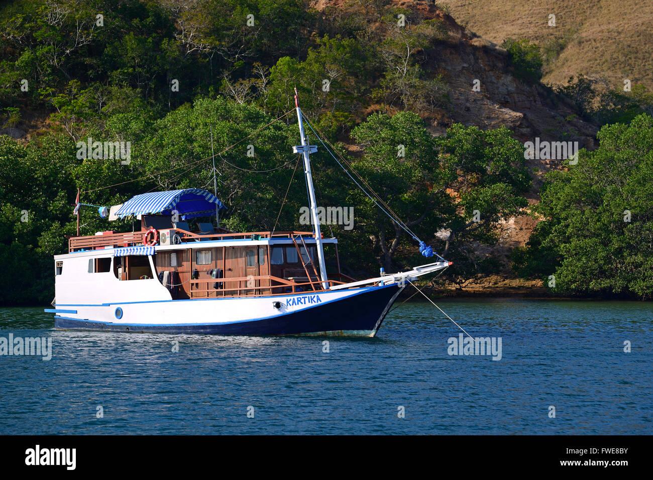 Typical tourist ship anchoring off Rinca Island, Komodo National Park, UNESCO World Heritage Site, Indonesia, Asia - Stock Image