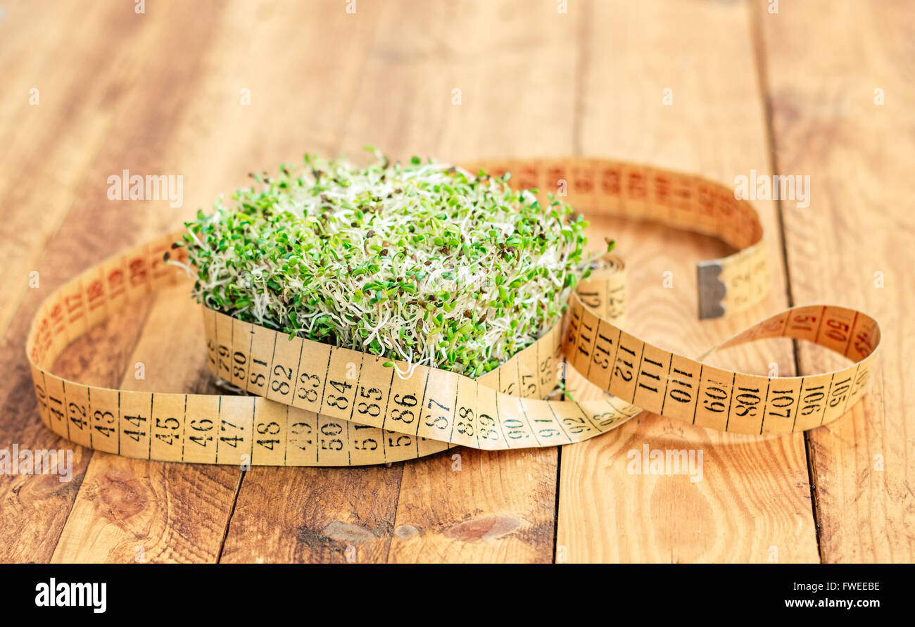 Alfalfa and arugula sprouts surrounded with an old flexible measuring tape on a wooden board. - Stock Image