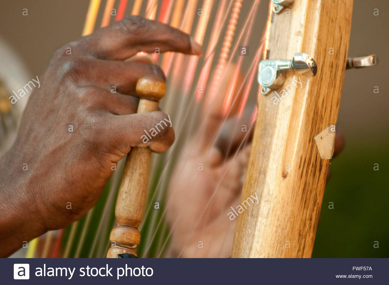 The player plucks the strings of a kora whilts holding on to the hand post. - Stock Image